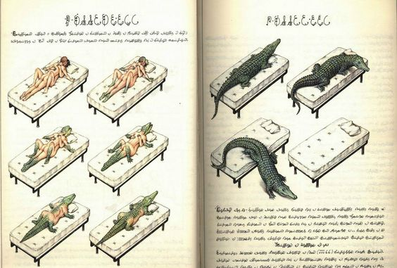 Le monde imaginaire, surréaliste et indéchiffrable du Codex Seraphinianus - La boite verte