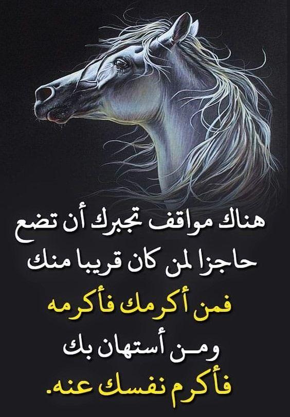 للصبر حدود Beautiful Mind Quotes Love Words Arabic Quotes