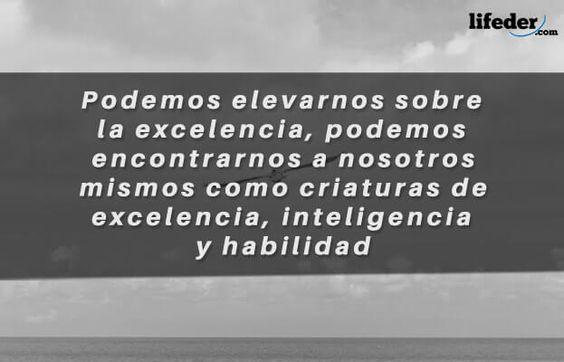 Las Mejores Frases de Juan Salvador Gaviota - Lifeder