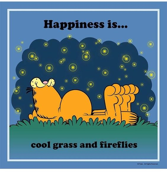 Childhood, fireflies, Garfield and a nap under the stars