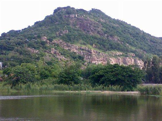Núi Cô Tô