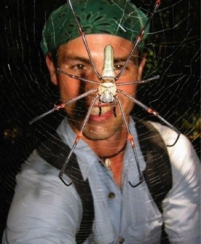 Araña gigante puuuaj #araña #spider frikichorradas.com