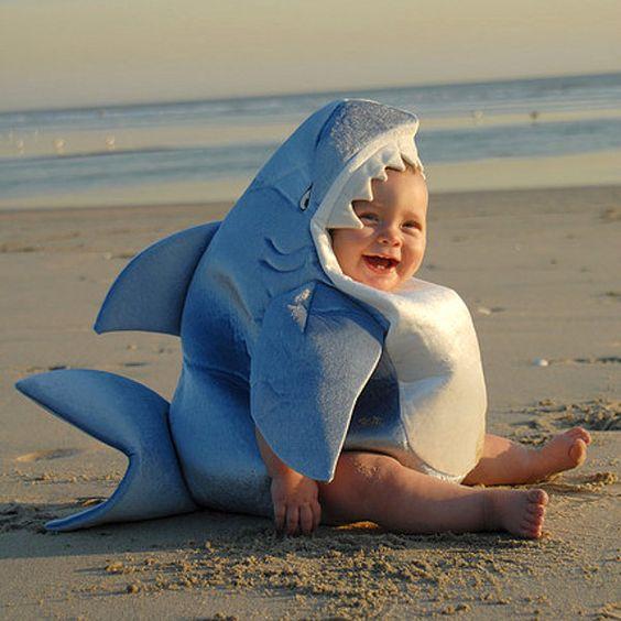 Bébé requin: