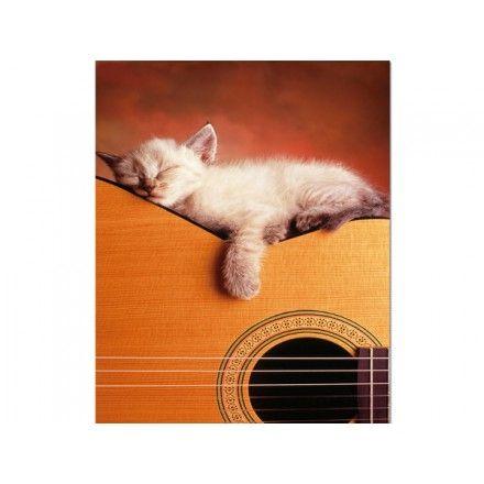 15510 - Puzzle Mi Guitarra, 500 piezas, Educa.  http://sinpuzzle.com/puzzle-500-piezas/1149-15510-puzzle-mi-guitarra-500-piezas-educa.html
