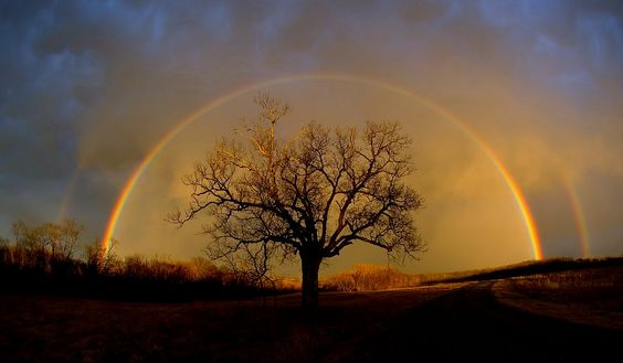 Rainbow at Elam Bend; Elam Bend Conservation Area: McFall, Missouri.  © D. Bush February 2, 2006