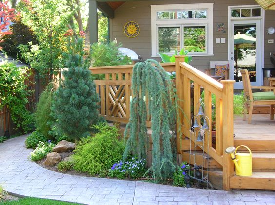 Like this use of weeping conifers