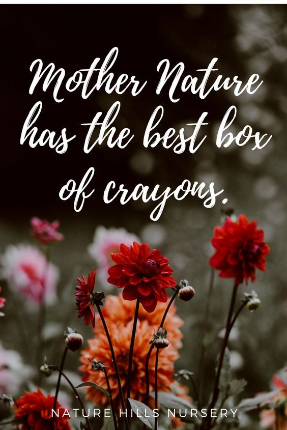 mother nature has the best box of crayons mother nature quotes