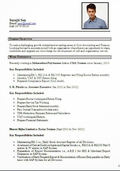 best resume Sample Template Example ofExcellent Curriculum Vitae - finance report format