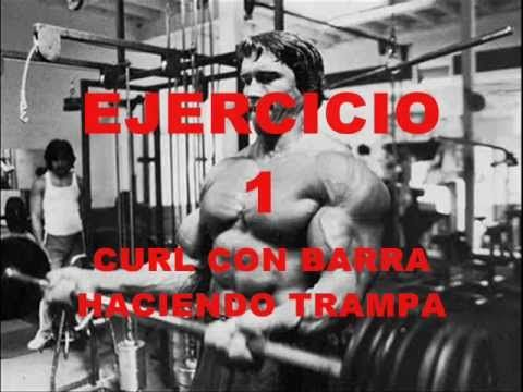 Como aumentar masa muscular en los brazos al estilo ARNOLD Schwarzenegger - http://costaldemusculos.com/como-aumentar-masa-muscular-en-los-brazos-al-estilo-arnold-schwarzenegger/