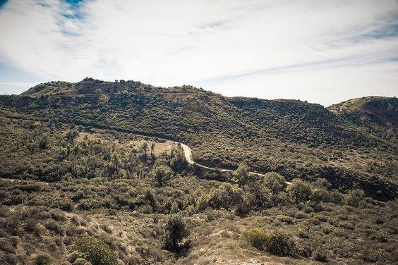 Simple nature.  #teamcanon #canon5dmarkiii #5dmarkiii #instacars #naturephotography #5d #canonphotography #nature #desert #hike #hiking #beauty #natureporn