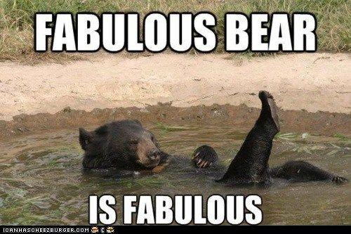 Fabulous Bear