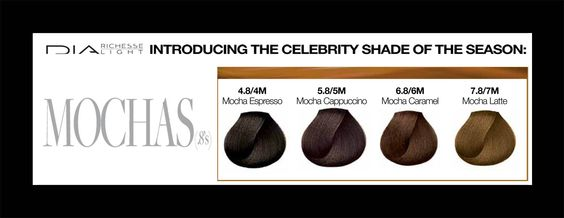 Shades mocha and november on pinterest - Loreal salon colour chart ...