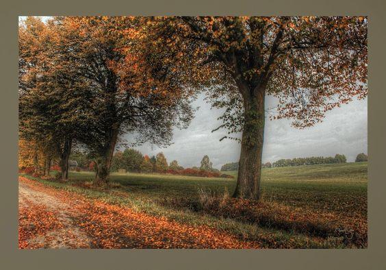 Sonnenaufgang Ampertal, Fotos Ampertal,verträumte Bilder - Untergartelshausen