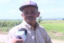 Productores De Arroz De Montecristi Casi Lo Pierden Todo Por Sequía #Video