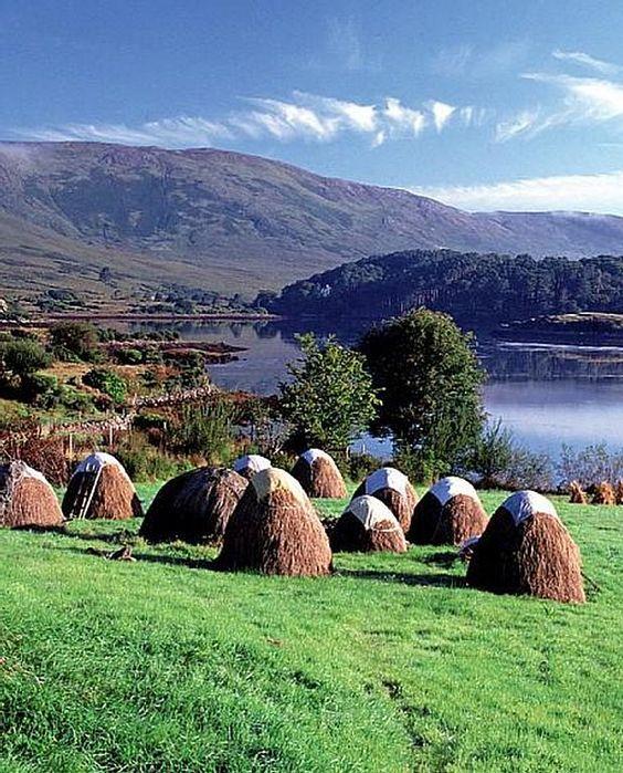 Connemara, County Galway, Ireland. ڿڰۣ