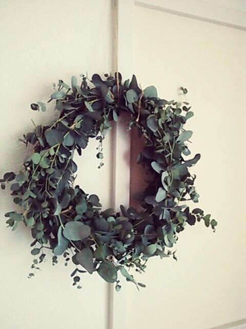 ひーさんが投稿した画像です。他のひーさんの画像も見てませんか? おすすめの観葉植物や花の名前、ガーデニング雑貨が見つかる!GreenSnap(グリーンスナップ)