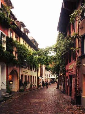 """Freiburg is the """"Jewel of the Black Forest."""" Known throughout Germany for Albert Ludwig University of Freiburg, good weather, and vineyards, Freiburg is considered by Germans to be a desirable place to live."""