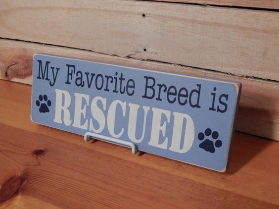 Wooden My Favorite Breed is Rescued Sign, Light Blue, Handcrafted