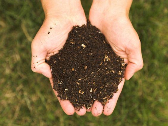 Compost : Vos déchets valent de l'or ! | Conseils de jardinage pour jardiniers et curieux de nature