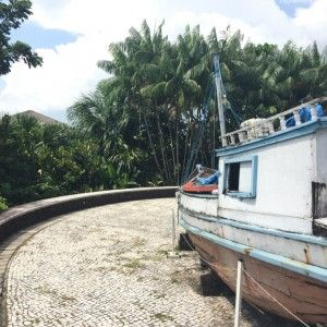 sisters in travel-mangal das garças-barco em tamanho real