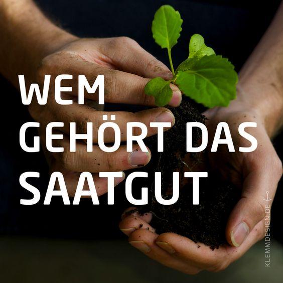 #Oekosaatgut #Initiative #klemm #design #klemmdesign #saatgut #bio #Brand #CorporateDesign #Signet #Kampagne