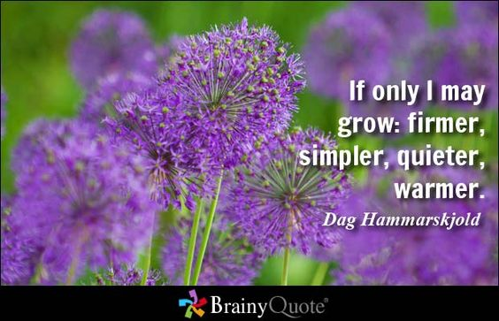 If only I may grow: firmer, simpler, quieter, warmer. - Dag Hammarskjold