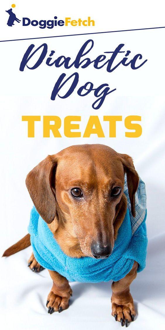 The 5 Best Diabetic Dog Treats 2021 Doggiefetch Diabetic Dog Dog Treats Types Of Insulin