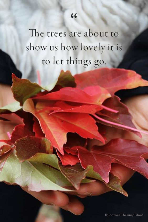 "Fall--""The trees are about to show us how lovely it is to let things go."""