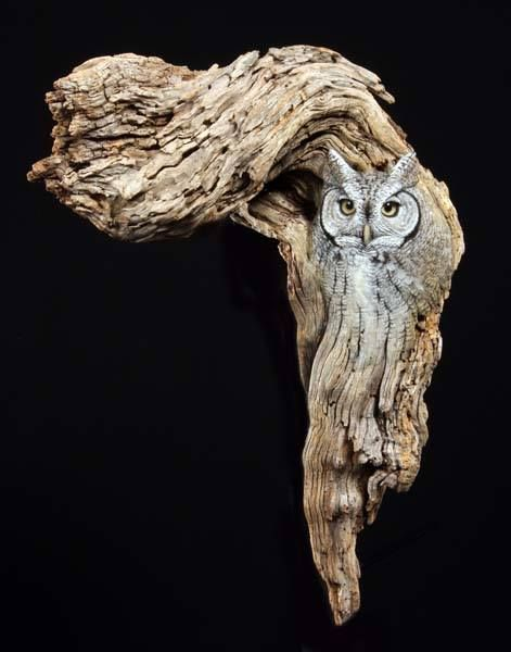 Screech owl by wildlife artist and sculptor earl matz