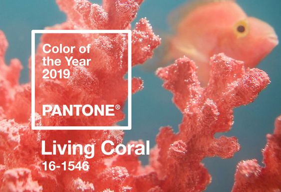 Pantone Color of the Year 2019 Palette Exploration | Living Coral 16-1546