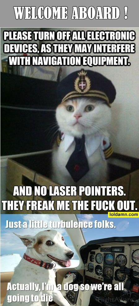 14540f32d9c9023ce2f325c6208173ac funny pictures today! (10 pics funny, awesome and folk,Laser Pointers Funny Airplane Meme