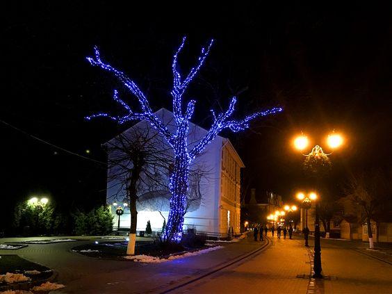 Город на Балтике дышит новогодним настроением. Фото: Evgenia Shveda