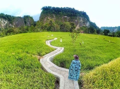 30 Gambar Pemandangan Indah Hijau 25 Tempat Wisata Di Indonesia Dengan Pemandangan Indah 2020 Download Gambar Pem Di 2020 Pemandangan Taman Nasional Komodo Pantai