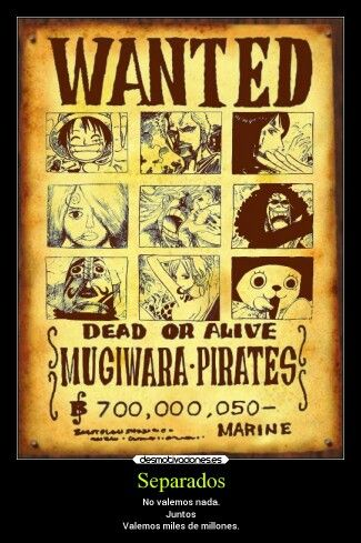 Mugiwara pirates separados no valemos nada juntos valemos miles de millones☆★