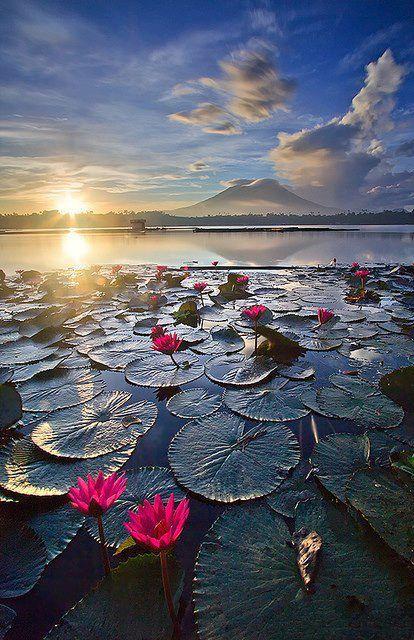 Sampaloc Lake, Laguna, Philippines. Where I'm going when. Go back to the motherland