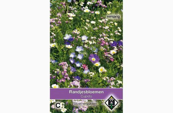 Kantbed Blomster Og Eller Krukke Blomster Blanding Med Billeder Blomster Krukke Blanding