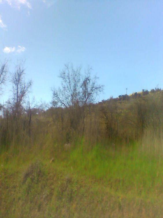 camino Iloca
