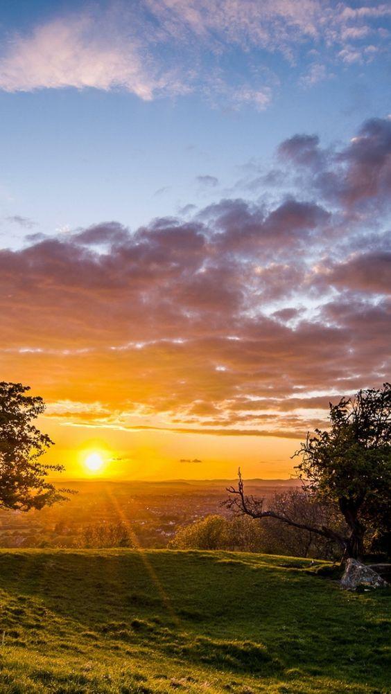 soooooo beautiful #nature #landscape ♥♥♥ sunset, trees, landscape