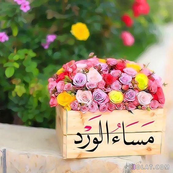 مسجات مسائية بالصور 2019 صور مساء الخير للفيس مسجات وتوبيكات مساء الخير للجميع Good Evening Greetings Good Morning Images Flowers Evening Greetings