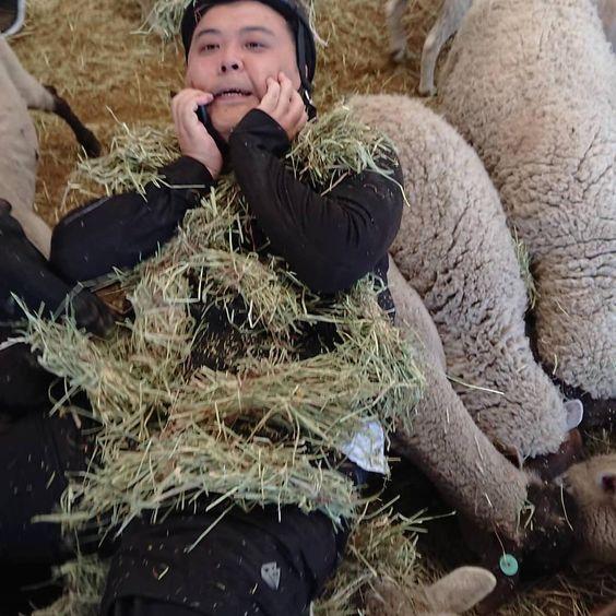 羊と久保田さん