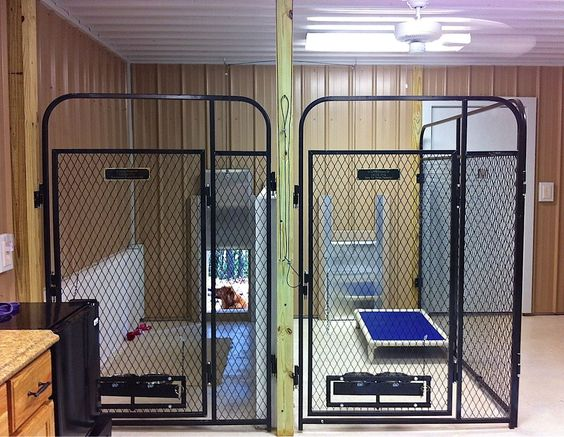 Inside multiple dog cages multiple dog kennels for Dog kennel in garage ideas
