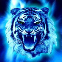 blue tiger blue tiger - Google Search | Art- Murals ...