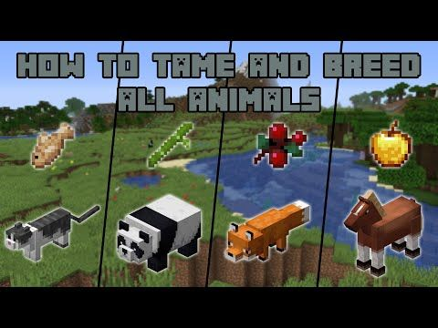 How To Tame And Breed All Animals In Minecraft Youtube Minecraft Projects Minecraft Farm Minecraft Designs