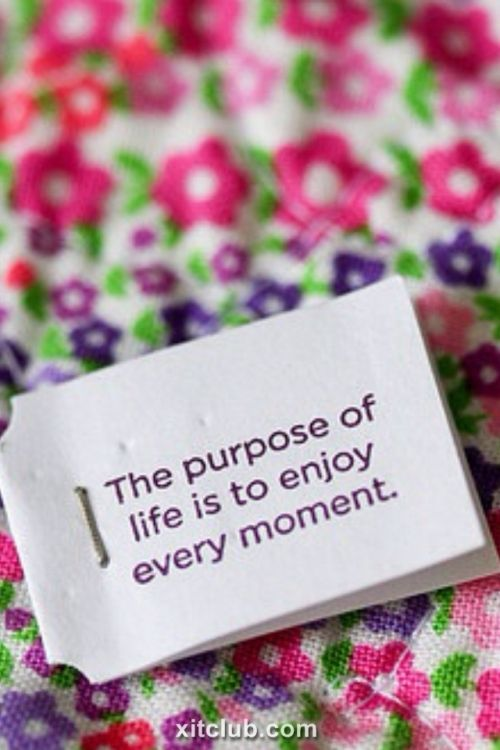 beaufiul quotes 3  beautiful quotes lovely The purpose of life is to enjoy