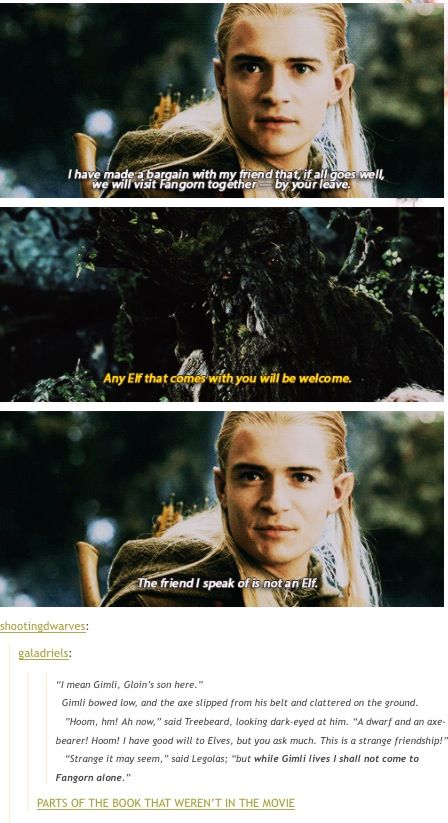 14907cb8993e65ada595f40dc01ba1bf best friendship true friendships best scene evar lotr, legolas and hobbit