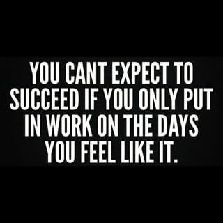 You can't expect to be successful if you put in work on the days you feel like it