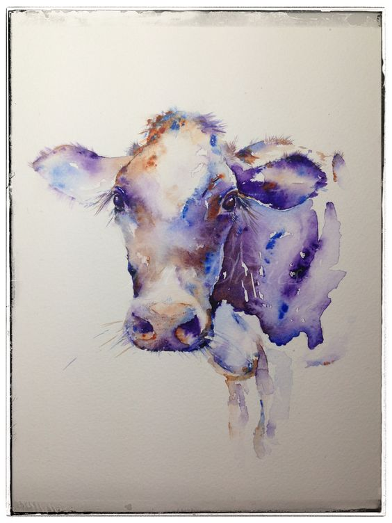 """Purple cow """"Milkyway"""" watercolour painting by Jane Davies available as a LIMITED EDITION PRINT"""