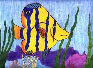 Un tuffo nelll'oceano per imparare a disegnare i pesci