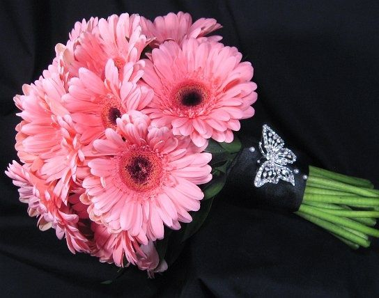 Light Pink Gerbera Daisy Bouquet With Black Ribbon Wrap