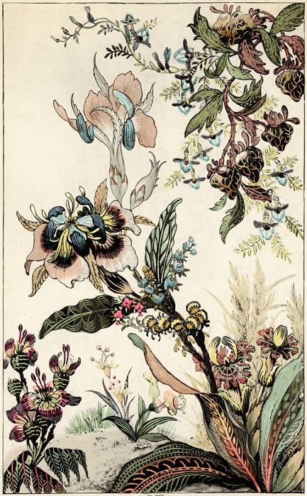 TROWBRIDGE - Japanese Fantasy Flowers - These colourful Art Deco floral images are fine art giclee reproductions of original designs used to produce hand-painted wallpaper and are from the TROWBRIDGE antique archives. in Silver Leaf Mirror (Frame Code: 965)
